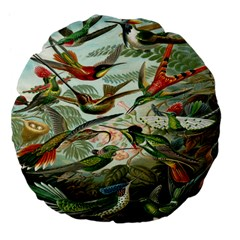 Beautiful Bird Large 18  Premium Flano Round Cushions by Nexatart