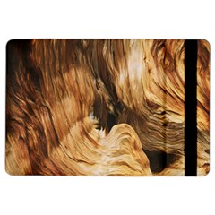 Brown Beige Abstract Painting Ipad Air 2 Flip by Nexatart