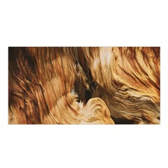 Brown Beige Abstract Painting Satin Shawl by Nexatart