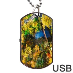 Bridge River Forest Trees Autumn Dog Tag Usb Flash (two Sides) by Nexatart