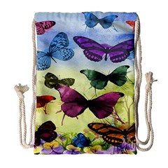 Butterfly Painting Art Graphic Drawstring Bag (large) by Nexatart