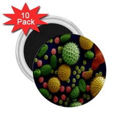 Colorized Pollen Macro View 2 25  Magnets (10 Pack)