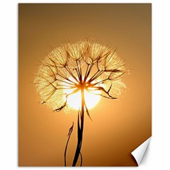 Dandelion Sun Dew Water Plants Canvas 16  X 20