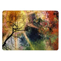 Decoration Decorative Art Artwork Samsung Galaxy Tab 10 1  P7500 Flip Case