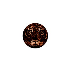 Eye Of The Tiger 1  Mini Magnets by Nexatart