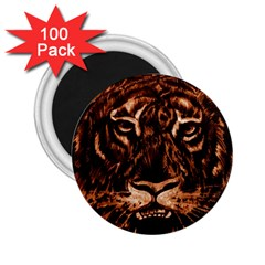 Eye Of The Tiger 2 25  Magnets (100 Pack)