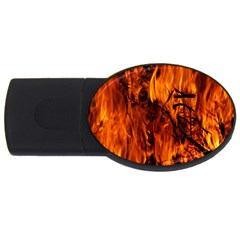 Fire Easter Easter Fire Flame Usb Flash Drive Oval (2 Gb)