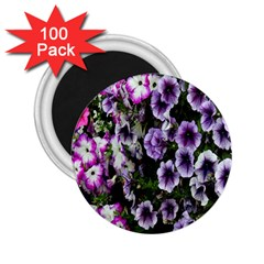 Flowers Blossom Bloom Plant Nature 2 25  Magnets (100 Pack)  by Nexatart