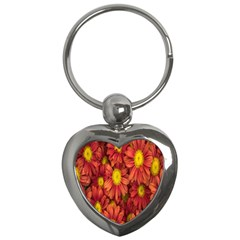 Flowers Nature Plants Autumn Affix Key Chains (heart)  by Nexatart