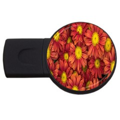 Flowers Nature Plants Autumn Affix Usb Flash Drive Round (2 Gb)