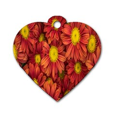 Flowers Nature Plants Autumn Affix Dog Tag Heart (one Side)