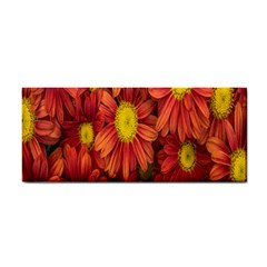 Flowers Nature Plants Autumn Affix Cosmetic Storage Cases by Nexatart