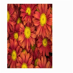 Flowers Nature Plants Autumn Affix Large Garden Flag (two Sides) by Nexatart