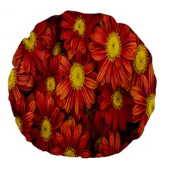 Flowers Nature Plants Autumn Affix Large 18  Premium Flano Round Cushions by Nexatart