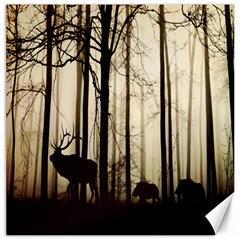 Forest Fog Hirsch Wild Boars Canvas 20  x 20   by Nexatart