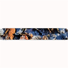 Frost Leaves Winter Park Morning Small Bar Mats by Nexatart