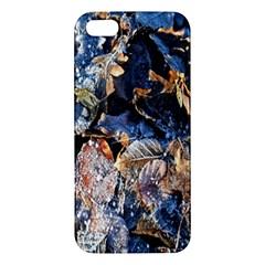 Frost Leaves Winter Park Morning Iphone 5s/ Se Premium Hardshell Case by Nexatart