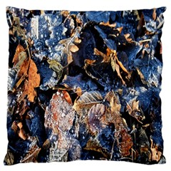 Frost Leaves Winter Park Morning Standard Flano Cushion Case (one Side)