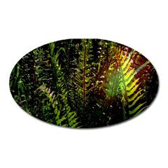 Green Leaves Psychedelic Paint Oval Magnet by Nexatart