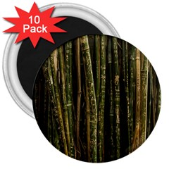 Green And Brown Bamboo Trees 3  Magnets (10 Pack)