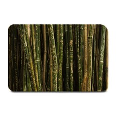Green And Brown Bamboo Trees Plate Mats by Nexatart