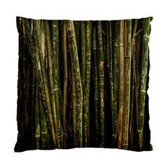 Green And Brown Bamboo Trees Standard Cushion Case (two Sides) by Nexatart
