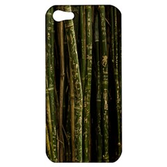 Green And Brown Bamboo Trees Apple Iphone 5 Hardshell Case
