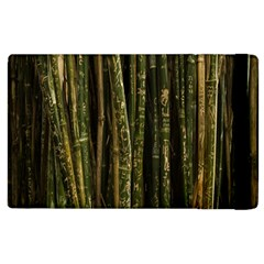 Green And Brown Bamboo Trees Apple Ipad 2 Flip Case