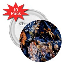 Frost Leaves Winter Park Morning 2 25  Buttons (10 Pack)  by Nexatart