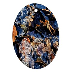 Frost Leaves Winter Park Morning Oval Ornament (two Sides) by Nexatart