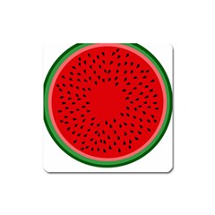 Watermelon Square Magnet by Valentinaart