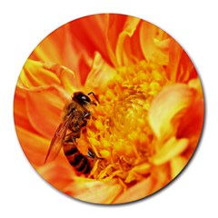 Honey Bee Takes Nectar Round Mousepads