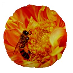 Honey Bee Takes Nectar Large 18  Premium Round Cushions