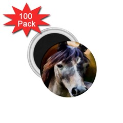 Horse Horse Portrait Animal 1 75  Magnets (100 Pack)