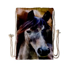 Horse Horse Portrait Animal Drawstring Bag (small) by Nexatart