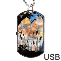 Landscape Sunset Sky Summer Dog Tag Usb Flash (one Side) by Nexatart