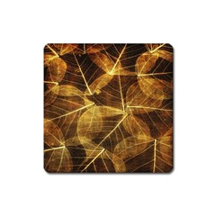 Leaves Autumn Texture Brown Square Magnet