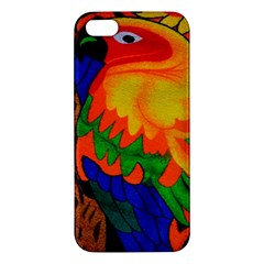 Parakeet Colorful Bird Animal Apple Iphone 5 Premium Hardshell Case