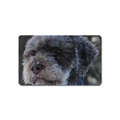 Lagotto Romagnolo Magnet (Name Card) by TailWags