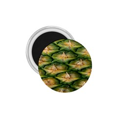 Pineapple Pattern 1 75  Magnets by Nexatart