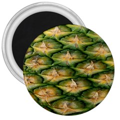 Pineapple Pattern 3  Magnets by Nexatart