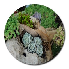 Plant Succulent Plants Flower Wood Round Mousepads by Nexatart