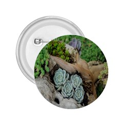 Plant Succulent Plants Flower Wood 2 25  Buttons by Nexatart