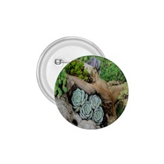 Plant Succulent Plants Flower Wood 1 75  Buttons by Nexatart