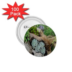 Plant Succulent Plants Flower Wood 1 75  Buttons (100 Pack)  by Nexatart