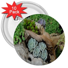 Plant Succulent Plants Flower Wood 3  Buttons (10 Pack)  by Nexatart