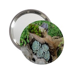 Plant Succulent Plants Flower Wood 2 25  Handbag Mirrors by Nexatart