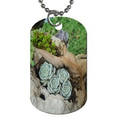 Plant Succulent Plants Flower Wood Dog Tag (one Side) by Nexatart