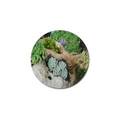 Plant Succulent Plants Flower Wood Golf Ball Marker (10 Pack) by Nexatart