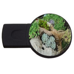 Plant Succulent Plants Flower Wood Usb Flash Drive Round (4 Gb) by Nexatart
